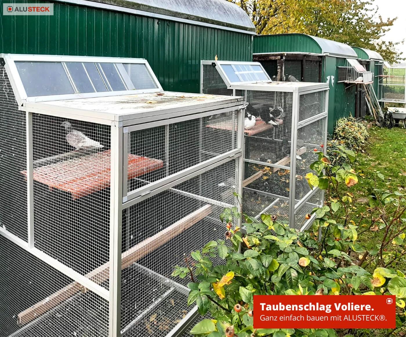 Voliere für Tauben selber bauen Käfig Reiseschlag