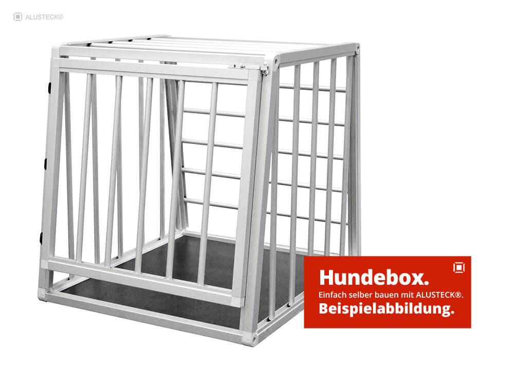 Hundetransportbox Bauanleitung